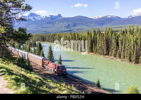 A freight train on the Canadian Pacific Railway running beside the Bow River and Rocky Mountains at Castle Junction NW of Banff, Alberta, Canada - Stock Photo