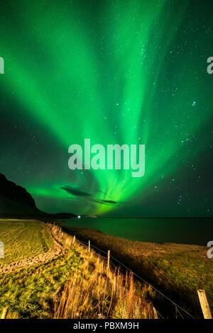 Northern lights, Aurora Borealis, Hali, Iceland, Europe - Stock Photo