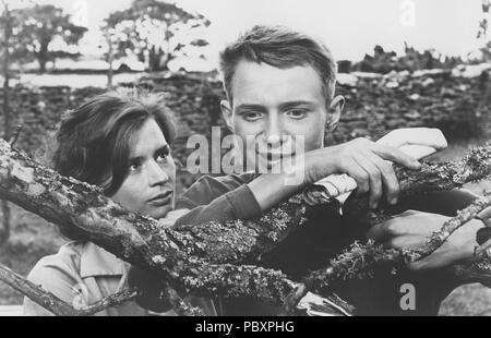 Through a Glass Darkly. Swedish film by Ingmar Bergman 1961 starring Harriet Andersson and Lars Passgård.  Ingmar Bergman. 1918-2007.  Swedish film director. - Stock Photo