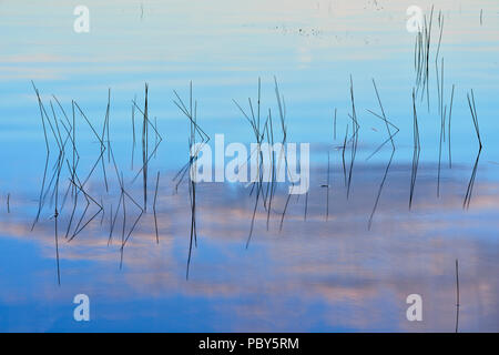 Morning sky reflected in the shallows of  Halfway Lake, Halfway Lake Provincial Park, Ontario, Canada - Stock Photo