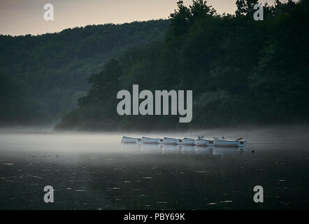 Rowing Boats on a Lake with mist in evening light - Stock Photo