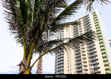Apartment condo hotel building balconies during sunny day in Miami, Florida with skyscrapers urban background, nobody perspective looking up colorful  - Stock Photo