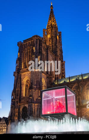 Strasbourg, 12.000-year-old mammoth skeleton suspended in display case, jet water fountain, illuminated cathedral, night, Alsace, France, Europe, - Stock Photo