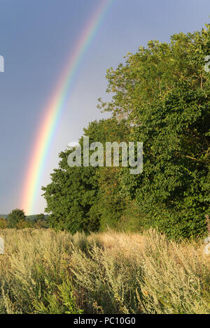 Rainbow against a dark atmospheric sky after a rain storm with dry wheat field in the foreground leading to green trees in the background - Stock Photo