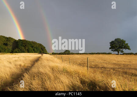 Double rainbow against a dark atmospheric sky after a rain storm with dry wheat field in the foreground with a fence leading towards green trees in th - Stock Photo