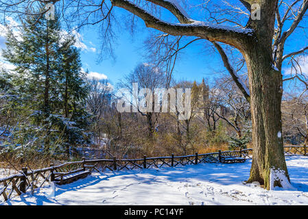 Winter Scenery in Central Park of New York City with ice and snow, USA - Stock Photo