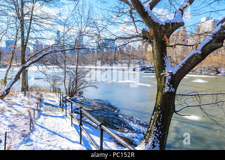 Lake in the Central Park of New York City in winter scenery, USA - Stock Photo