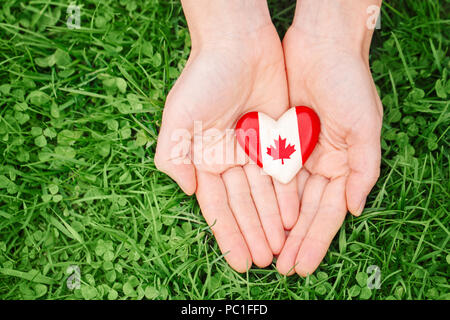 Macro closeup shot of hands palms holding round badge with red white canadian flag maple leaf, on green grass forest nature background outside, Canada - Stock Photo