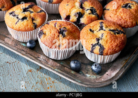 Tasty blueberry muffins on old baking tray sitting on rustic wooden table, text space - Stock Photo