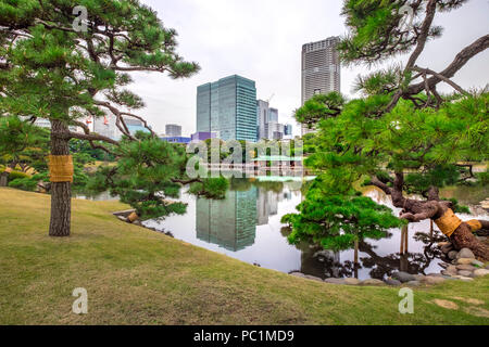 Hamarikyu (also Hama Rikyu) Oldest Japanse Garden and modern skyscrapers of Shiodome Area, Chuo Ward, Tokyo, Kanto Region, Honshu Island, Japan - Stock Photo