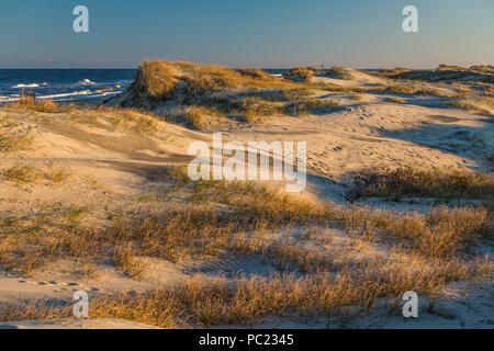 Late afternoon autumn 'magic hour' sunlight spreads  gold over beach dunes and sea grass, with the surf and sky on the horizon, Outer Banks, NC. - Stock Photo