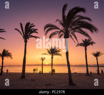 Silhouettes of palm trees against colorful sky at sunset. Tropical landscape with palms on the sandy beach, sea, gold sunlight in the evening in summe - Stock Photo