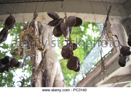 Hanging bunches of flowerr in the garden - Stock Photo