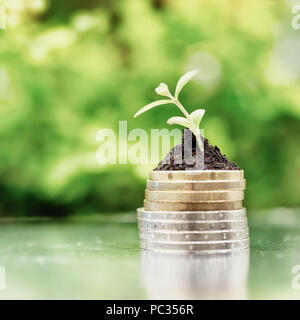 Coins in soil with young plant on green background. Money growth concept. High key filter. - Stock Photo