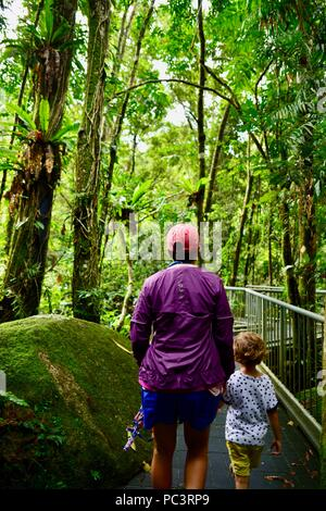 A mother and children walking together through wet tropical rainforest on the way to Josephine Falls, Bartle Frere QLD, Australia - Stock Photo