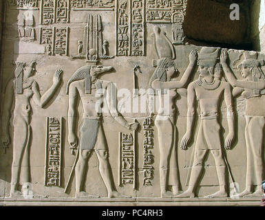 6278. Sobek, ancient Egyptian deity with a crocodile head, relief from the Kom Ombo temple, Egypt. - Stock Photo