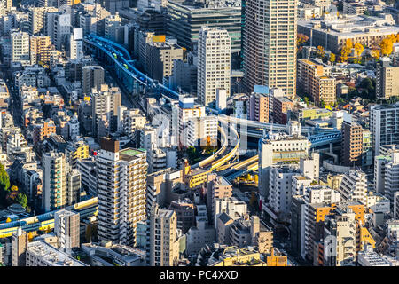 Asia Business concept for real estate and corporate construction - panoramic modern city skyline bird eye aerial view of Odaiba & Tokyo Metropolitan E - Stock Photo