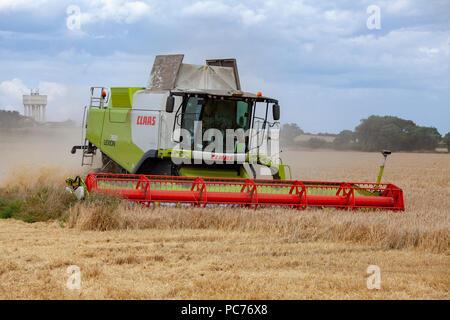 Claas Lexion TT TerraTrac Combine Harvester harvesting Barley in Norfolk, UK. - Stock Photo