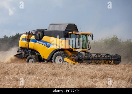 Combine Harvester harvesting Barley in Norfolk, UK. - Stock Photo
