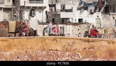Three elephants taking tourists up to Amber Palace / Amer Fort - Stock Photo