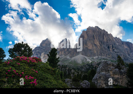 Sassolungo and Sassopiatto mountains, Italy. Photo from a hiking path in Dolomites, Dolomiti, Sella Alto Adige, South Tyrol - Stock Photo