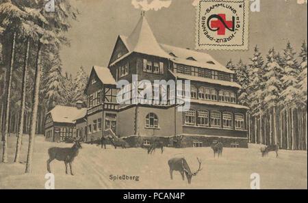 AK Friedrichroda, Wildfütterung am Spießberghaus (um 1910). Stock Photo