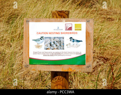 A notice for visitors to proceed with caution and be aware of nesting shorebirds at Burnham Overy Staithe, near Holkham, Norfolk, England, UK, Europe. - Stock Photo