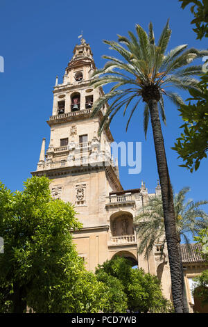 Torre del Alminar belfry of the Mezquita viewed from the Patio de los Naranjos, Cordoba, Andalucia, Spain, Europe - Stock Photo