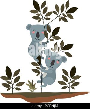 wild koalas couple in the jungle - Stock Photo