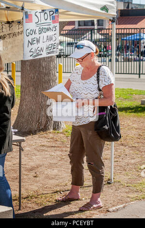 Beside a canopy at a fair in Costa Mesa, CA, a woman reads a petition opposing a new state gasoline tax and contemplates signing the document. Note sign. - Stock Photo