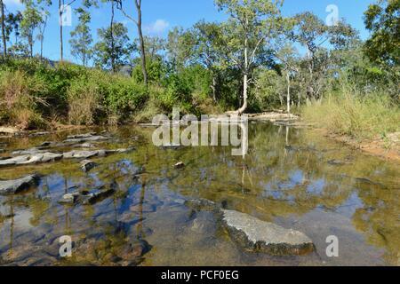 A small unnamed creek in the Australian bush, Townsville, Queensland, Australia