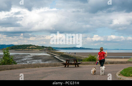 Cramond, Edinburgh, Scotland, United Kingdom, 2nd August 2018. A woman carrying ice creams followed by her dogs with a view of the causeway to Cramond Island - Stock Photo