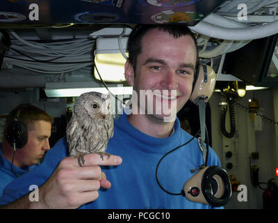 GULF (March 17, 2008) Aviation Boatswain's Mate Handling 3rd Class Alex Dieringer holds 'Fod,' a screech owl that was found on the flight deck of the Nimitz-class nuclear-powered aircraft carrier USS Harry S. Truman (CVN 75). The owl was discovered in the left-main wheel well of an F/A 18 Hornet during a pre-flight inspection of the aircraft during flight operations aboard the carrier. Truman and embarked Carrier Air Wing (CVW) 3 are deployed supporting Operations Iraqi Freedom, Enduring Freedom and maritime security operations. U.S. Navy - Stock Photo