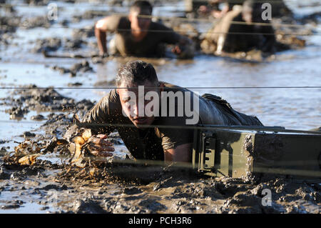 PORT HUENEME, Calif. (Oct. 26, 2012) Utilitiesman Constructionman Francisco Tirson, assigned to Bravo Company with Naval Mobile Construction Battalion (NMCB) 5, participates in a low crawl obstacle course event during Small Unit Leadership Capstone (SULC) at Naval Base Ventura County (NBVC). - Stock Photo