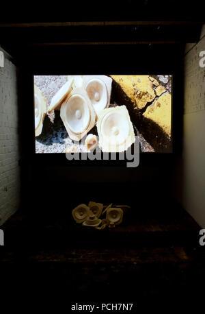 Art installations at the 'Tussen Taal en Beeld, Verzamelde Verhalen #01' art festival in Watou (Belgium, 11/07/2009) - Stock Photo