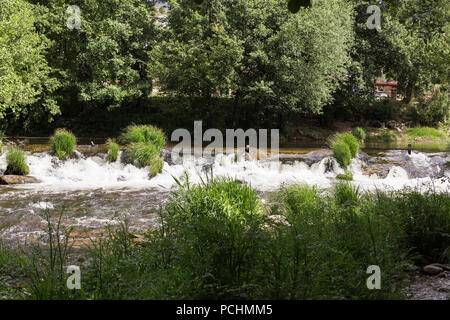 water running fast down a river among trees in spring - Stock Photo