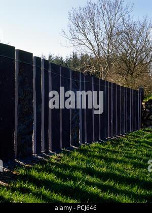 A modern slate fence of heather blue slabs from Penrhyn Quarry, Bethesda, in a woodland garden near Caernarfon, Wales, UK. - Stock Photo