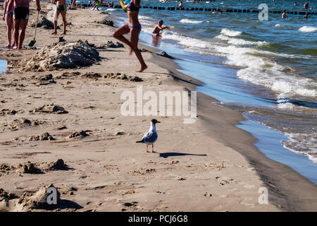 Children play on Bansin beach as People holiday at the Baltic sea resort on Usedom Island during 2018 Summer heat wave, Heringsdorf, Germany Bansin be - Stock Photo