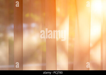 The evening sun shines through the tulle on the window. - Stock Photo