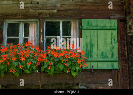 Window of a traditional wooden farmhouse high in the upper Lauterbrunnen valley at Trachsellauenen, Bernese Oberland, Switzerland - Stock Photo