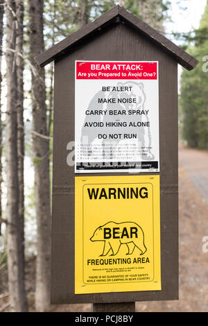 Signs warning hikers of possible bear sightings on a trail at Colter Bay Village in the Grand Tetons National Park in Wyoming, USA - Stock Photo