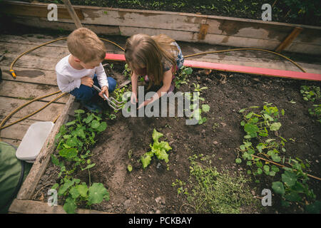 Kids planting seed in greenhouse - Stock Photo