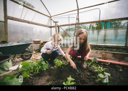 Kids spade digging in greenhouse - Stock Photo