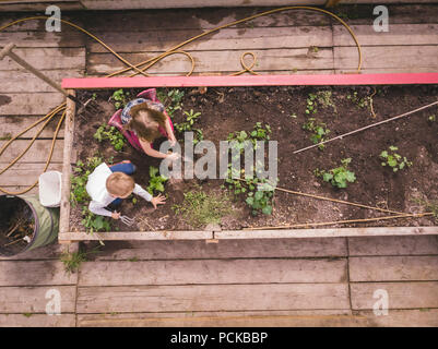 Kids gardening in greenhouse - Stock Photo