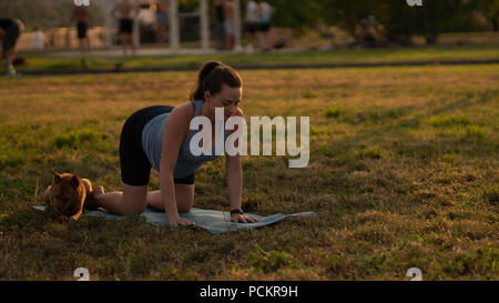 beautiful sporty fit yogini pregnant woman practices yoga
