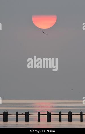 Shoeburyness, Southend-on-Sea, Essex, UK. 4th August, 2018. UK Weather: Sunrise over East Beach, Shoeburyness Credit: Ben Rector/Alamy Live News - Stock Photo