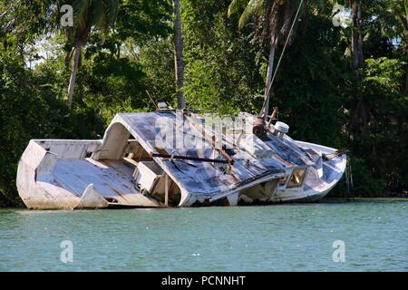 Old ship wreck boat in a river with a tree growing out of the roof in the jungles of Guatemala - Stock Photo