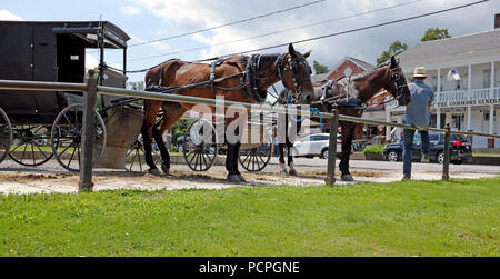 An Amish man sits next to his horse and carriage across from the End of the Commons General Store in Mesopotamia, Ohio. - Stock Photo