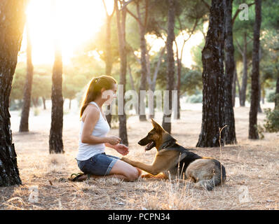 Young attractive latin woman teaching and loving her beautiful cute german shepherd dog in the park at sunset in nature care support happiness peacefu - Stock Photo