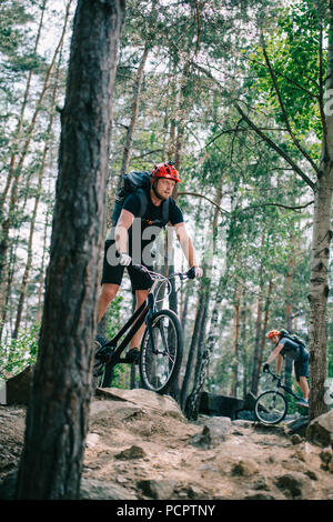 athletic young trial bikers riding at beautiful pine forest - Stock Photo